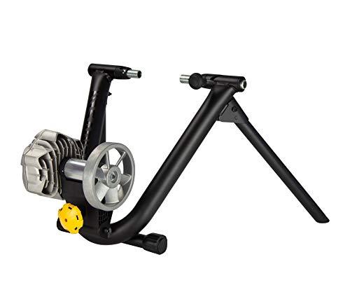 Saris Fluid² - Bicicleta estática unisex para adultos, color negro, talla única